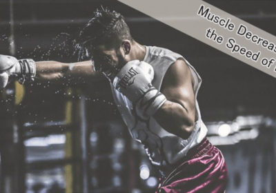 Will building muscle decrease the speed of punching?